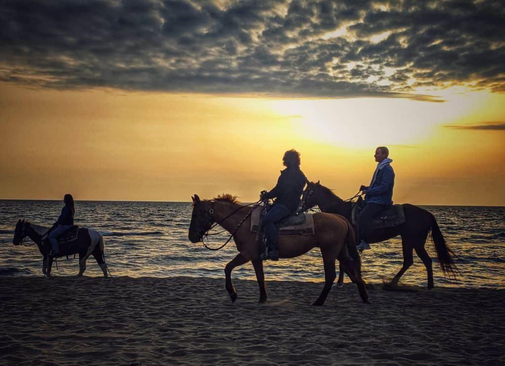 Spiaggia cavalli Paola Inglese